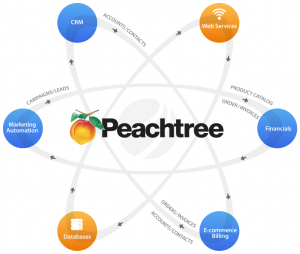 Peachtree Software Hosting